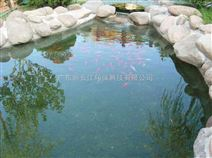景观、鱼池水处理设备工程