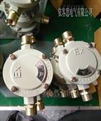 厂家直销防爆接线盒BHD-DN20直通、三通