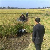朝天椒收割机 用途广泛牧草割晒机
